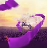 Kolorowa kreatywnie fotografii manipulacja z antyka lustrem Fotografia Stock