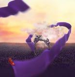 Kolorowa kreatywnie fotografii manipulacja z antykwarskim lustrem Fotografia Stock