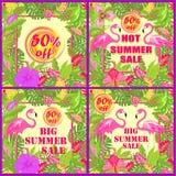 Kolorowa kwiecista etykietki różnica dla gorącej lato sprzedaży z tropikalnymi liśćmi, słońcem, egzotów kwiatami i róż ilustracja wektor