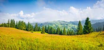 Kolorowa lato panorama mgłowa górska wioska obrazy royalty free