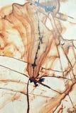 Kolorowa marmurowa podłoga Fotografia Stock