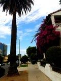 Kolorowa miasto scena Fotografia Royalty Free