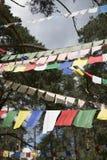 Kolorowa modlitwa zaznacza, święte tradycyjne flagi Buddyjska filozofia fotografia royalty free
