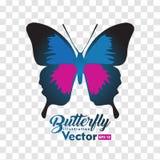 Kolorowa Motylia ilustracyjna wektorowa kolekcja ilustracji