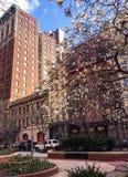 Kolorowa oaza w centrum Nowy Jork Fotografia Stock
