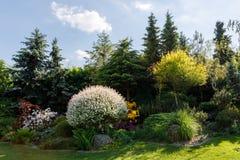 kolorowa ogrodowa wiosna Fotografia Stock