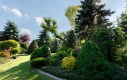 kolorowa ogrodowa wiosna Zdjęcia Stock