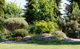 kolorowa ogrodowa wiosna Zdjęcie Stock