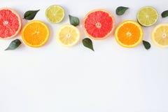 Kolorowa owoc granica świezi cytrusów plasterki z liśćmi Odgórny widok, flay nieatutowego nad białym tłem z kopii przestrzenią obraz stock