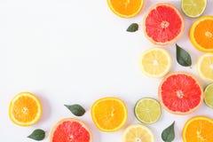 Kolorowa owoc kąta granica cytrusów plasterki i liście, odgórny widok nad białym tłem zdjęcie stock