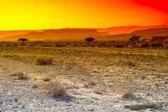 Kolorowa pustynia w Izrael Fotografia Royalty Free