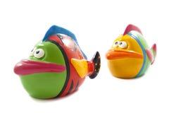 kolorowa ryba Obraz Stock