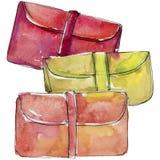 Kolorowa sprzęgłowa nakreślenie mody splendoru ilustracja w akwarela stylu odizolowywającym royalty ilustracja