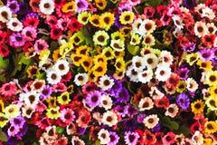 Kolorowa sztucznych kwiatów tekstura, tło Obrazy Royalty Free