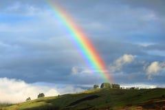Kolorowa tęcza w Papua - nowa gwinea zdjęcie royalty free