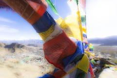 Kolorowa tibetan modlitwa zaznacza przy Leh, Ladakh, India zdjęcie royalty free