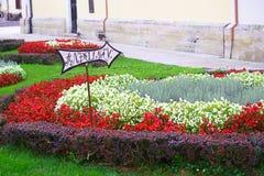 Kolorowa ulica w barokowym grodzkim Varazdin widoku, turystyczny destinati zdjęcie royalty free