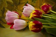 Kolorowa wiązka tulipany Obrazy Stock