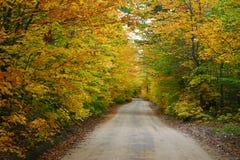 kolorowa wiejska droga zdjęcie royalty free