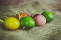 Kolorowa Wielkanocnego jajka dekoracja Obraz Stock