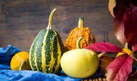 Kolorowe banie i jesień liście Fotografia Stock