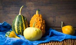 Kolorowe banie i jesień liście Zdjęcia Stock