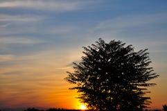Kolorowe chmury w niebie przy zmierzchem obraz stock