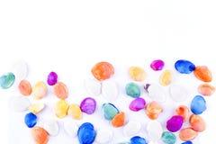 kolorowe denne skorupy Zdjęcie Stock