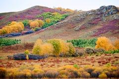 Kolorowe góry Fotografia Royalty Free