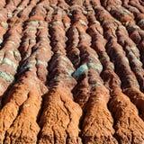 Kolorowe glin warstwy w Wodnej erozji na wzgórzu obrazy stock