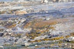 Kolorowe Gorące wiosny Przy Jeziornym Bogoria, Kenja Obraz Stock