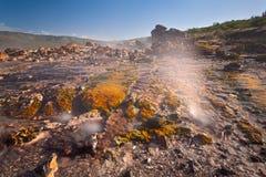 Kolorowe Gorące wiosny Przy Jeziornym Bogoria, Kenja Obraz Royalty Free