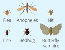 Kolorowe ikony odizolowywający insekt przyrody skrzydło wyszczególnia lato dżdżownicy gąsienicowych pluskw dziką wektorową ilustr ilustracji
