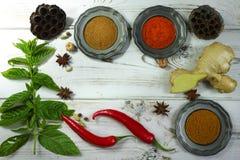 Kolorowe Indiańskie pikantność z świeżą mennicą na białym drewnianym stołowym wierzchołku obraz stock