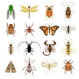 Kolorowe insekt ikony Inkasowe ilustracja wektor