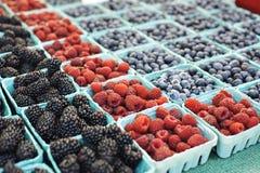 Kolorowe jagody w koszu przy rolnika rynku stojakiem zdjęcia royalty free