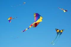 Kolorowe, jaskrawe kanie w niebie, Zdjęcia Royalty Free