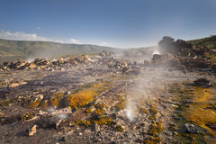 Kolorowe Jeziorne Bogoria Gorące wiosny w Kenja Obraz Stock