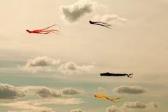 Kolorowe kanie lata w chmurnym niebie Retro stylów kolory zdjęcia royalty free