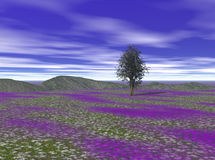 kolorowe krajobrazu Zdjęcia Stock
