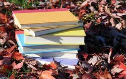 Kolorowe książki Fotografia Royalty Free