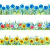 Kolorowe kwieciste bezszwowe granicy Jaskrawy tło - trawa i kwiaty fotografia royalty free