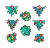Kolorowe kwieciste ikony Obraz Royalty Free