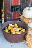 Kolorowe miniaturowe banie dla sprzedaży przy Halloweenową dyniową łatą Zdjęcie Royalty Free