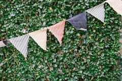 Kolorowe pasek chorągiewki na rośliny ścianie Obrazy Royalty Free