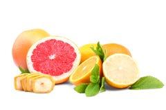 Kolorowe różne cytrus owoc na białym tle Smakowite pokrojone cytryny i grapefruits składniki organiczne Obraz Stock