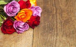 kolorowe róże obraz stock