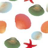 Kolorowe skorupy i czerwone rozgwiazdy, bezszwowy wzór, przejrzysty tło Zdjęcia Royalty Free