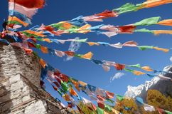 Kolorowe tibetan flagi i ?nie?na g?ra przy Siguniang scenicznym terenem, Chiny zdjęcia stock
