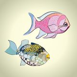 kolorowe tropikalne ryby Obrazy Stock